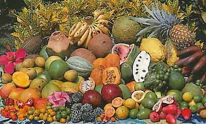 Les fruits et légumes de Martinique
